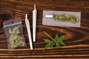 Cannabis and Conception: Marijuana's Effects on Fertility