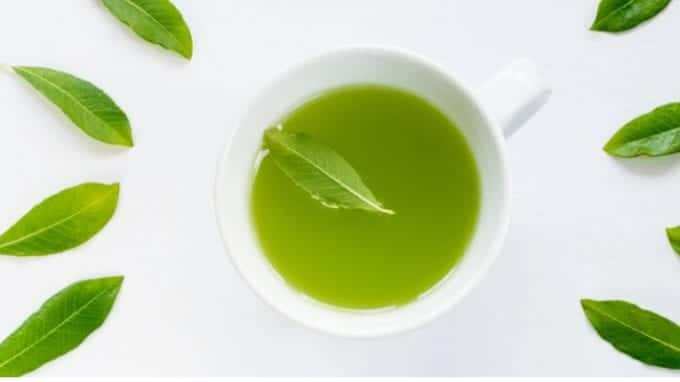 How Green Tea Catechins Impact Infertility