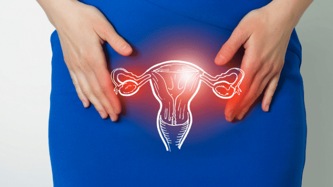 Everything You Need to Know About Pelvic Adhesions and Your Fertility